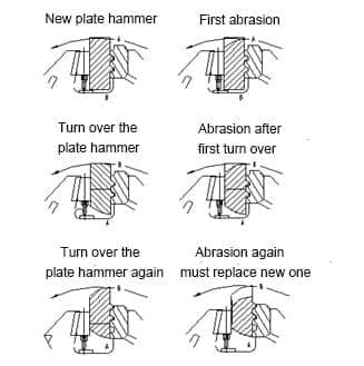 crusher plate hammer